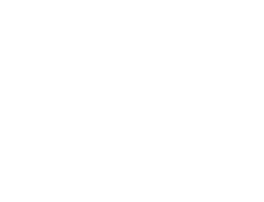 woman walking man in wheelchair