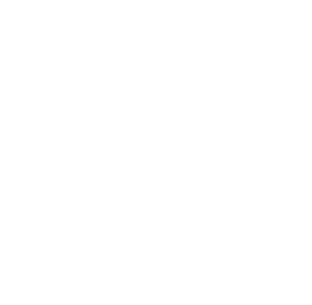 care manager using care management application